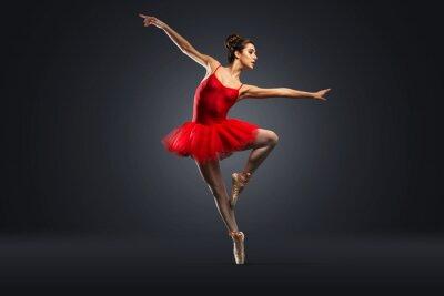 Canvastavlor Balettdansös