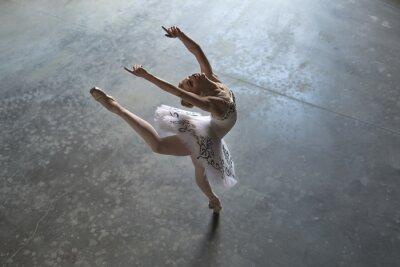 Canvastavlor ballerina inomhus