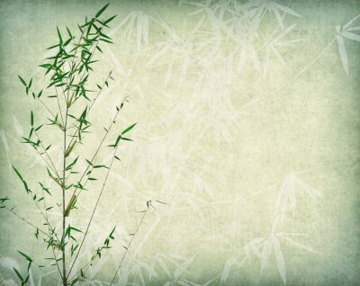 Canvastavlor bamboo on old paper background
