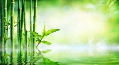Canvastavlor Bambubakgrund - Lummig växtlighet med reflektion i vattnet