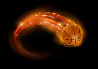 Canvastavlor basket komet