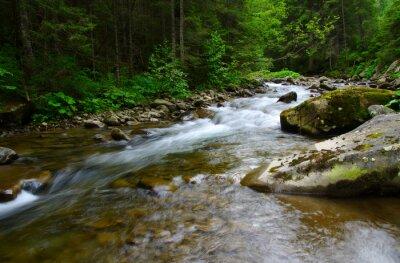 Canvastavlor berg flod