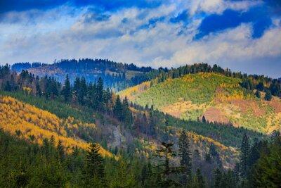 Canvastavlor Beskid Mountains, Polen