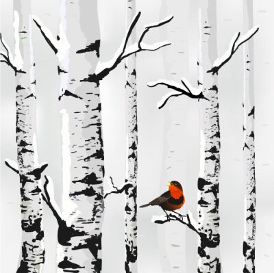 Canvastavlor Björk i snö, vinter kort i vektorn