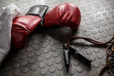 Canvastavlor Boxhandskar och rep