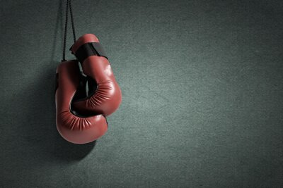 Canvastavlor Boxnings handskar