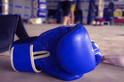 Canvastavlor Boxningshandskar blå