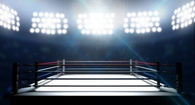 Canvastavlor Boxningsring I Arena