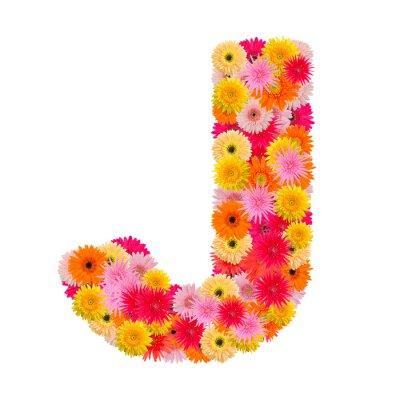 Canvastavlor Brev J alfabetet med gerbera isolerad på vit bakgrund