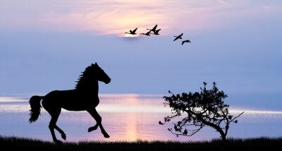 Canvastavlor caballo corriendo por El Lago