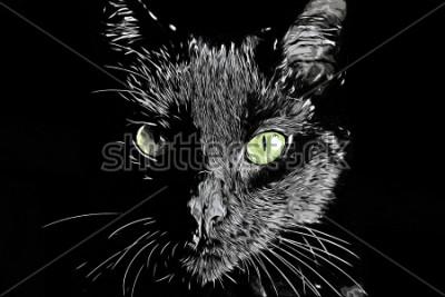 Canvastavlor Cat face raster svart och vitt realistisk handritad scratchboard stil bild
