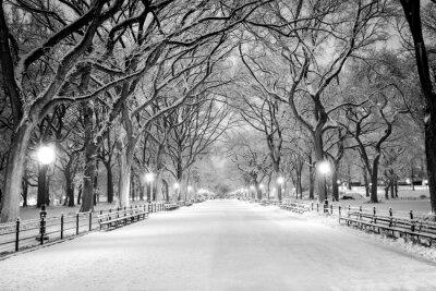 Canvastavlor Central Park, New York täckt av snö i gryningen