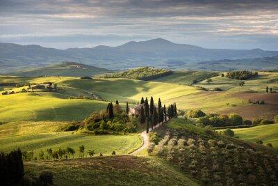 Canvastavlor Countryside near Pienza, Tuscany, Italy