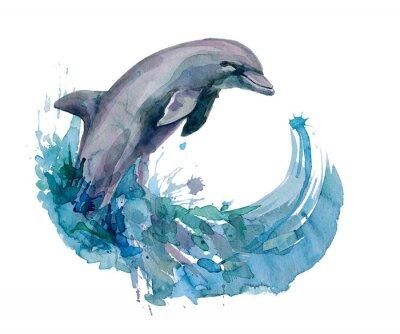 Canvastavlor delfin