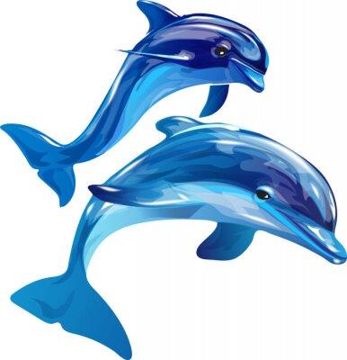 Canvastavlor delfiner vita