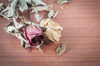 Canvastavlor Den sista Valentine Rose.
