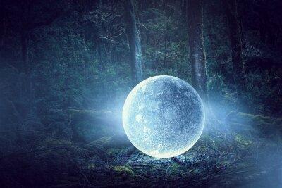 Canvastavlor Det är fullmåne. Mixad media
