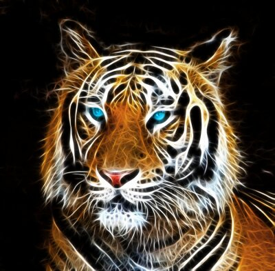 Canvastavlor Digital dra av en tiger