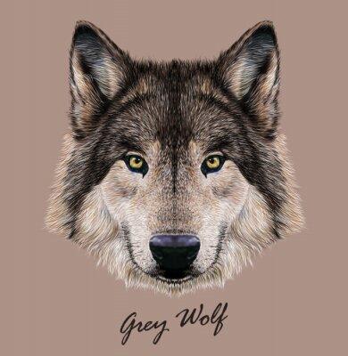Canvastavlor Digital vektor illustration porträtt av en varg.