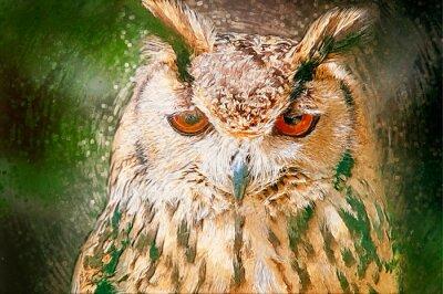 Canvastavlor Dras Owl Porträtt