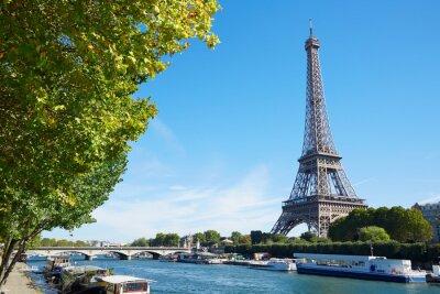 Canvastavlor Eiffeltornet och Seine floden vy med gröna träd grenar, soligt