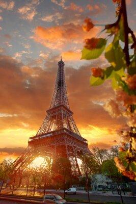 Canvastavlor Eiffeltornet under vacker vårmorgon i Paris, Frankrike