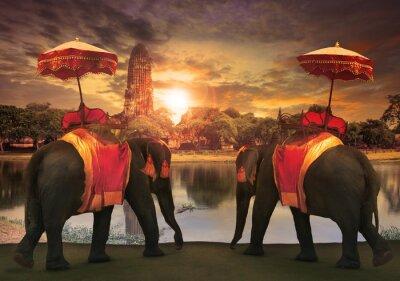 Canvastavlor elefant dressing med thai rike tradition tillbehör prövad