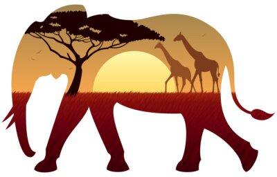 Canvastavlor elefant Landskap