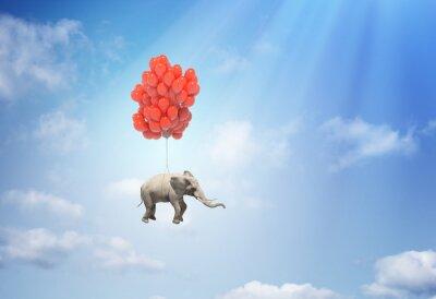 Canvastavlor Elefant med ballonger