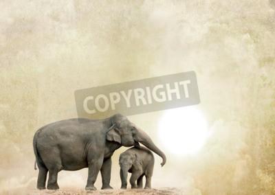 Canvastavlor elefanter på en grungebakgrund