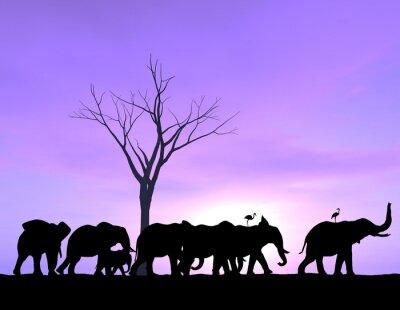 Canvastavlor En elefant leder vägen som de andra följer med en lila solnedgång eller soluppgång.
