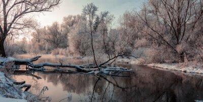 Canvastavlor fantastiskt vinterlandskap