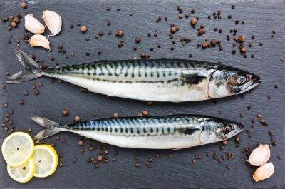 Canvastavlor Färsk makrill fisk på en skiffer skärbräda. Toppvy