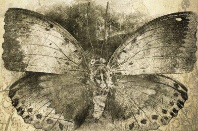 Canvastavlor fjäril