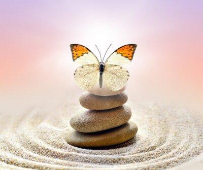 Canvastavlor Fjäril och stenar balans