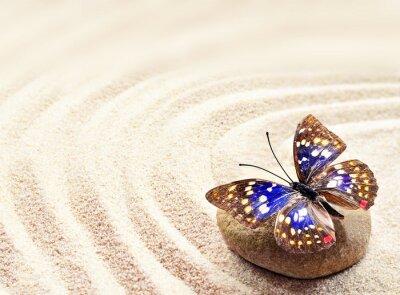 Canvastavlor Fjäril på sand