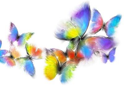 Canvastavlor fjärilar
