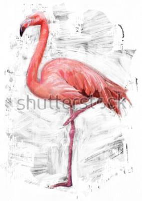 Canvastavlor flamingo fågel skiss / oljemålning färg