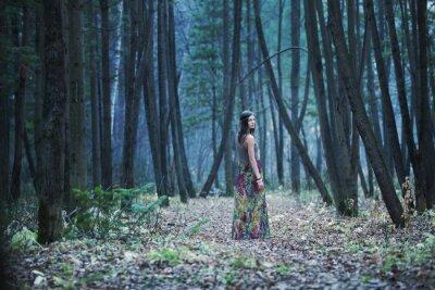 Canvastavlor Flickan i en mörk skog