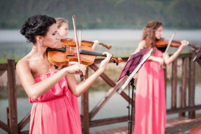 Canvastavlor Flickor spelar violin