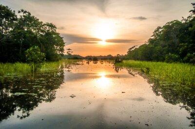 Canvastavlor Flod i Amazonas i skymningen, Peru, Sydamerika