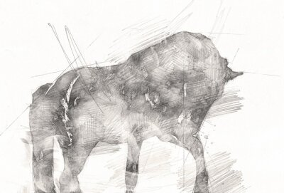 Canvastavlor freehand horse head pencil drawing