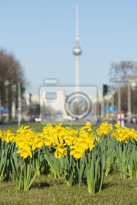Canvastavlor Frühling i Berlin