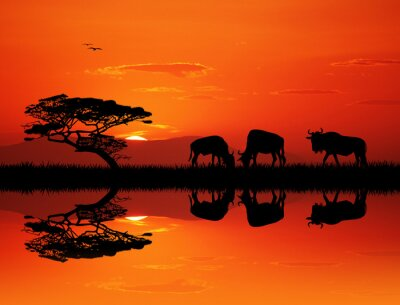 Canvastavlor gnu silhuett vid solnedgången