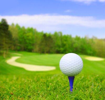 Canvastavlor Golfboll på kurs