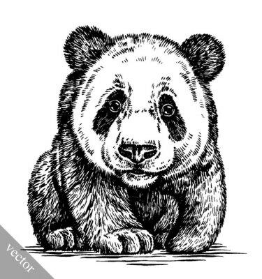 Canvastavlor gravera bläck draw panda illustration