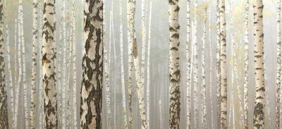Canvastavlor Grove björkar och torrt gräs i början av hösten, faller panorama