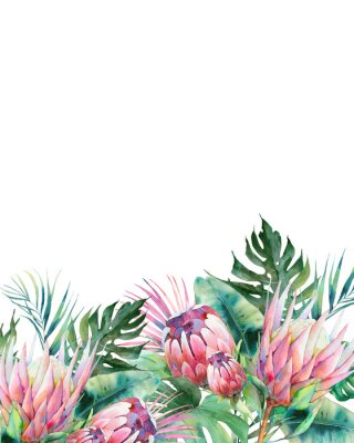 Canvastavlor Hand drawn greeting card design with exotic leaves and protea flowers isolated on white background. Palm tree, banana leaves, mostera plants
