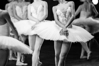 Canvastavlor Händerna på ballerinor. Händerna på ballerinor. Balett uttalande. Stora ballerinor. Ballerinas i rörelsen.