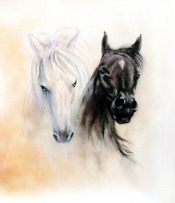 Canvastavlor Häst huvuden, två svarta och vita häst sprit, vackra detaljer